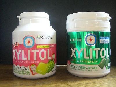 xylitol1.jpg